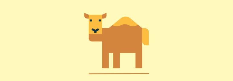 Обложка: Верблюжья нотация или нижние подчёркивания: научный подход