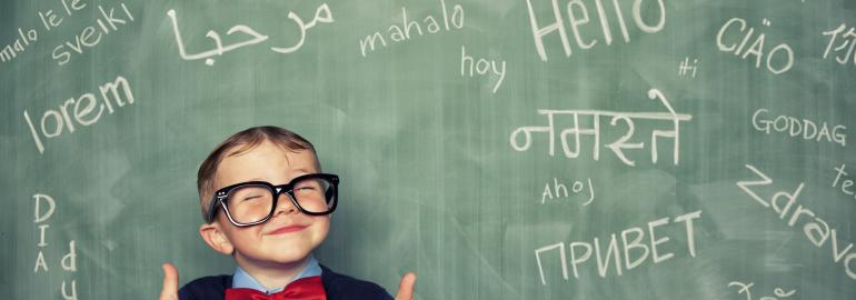 Обложка: Руководство по выбору и изучению языков программирования