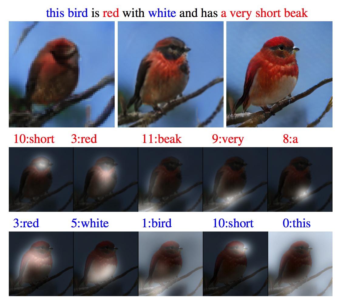 Эта птица красно-белая с очень коротким клювом