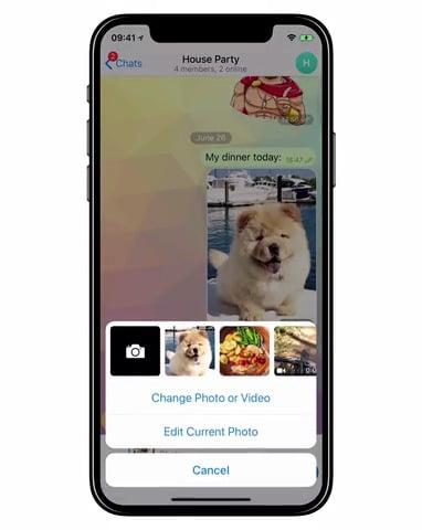 Telegram Replace Feature