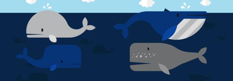 Обложка: 10 команд для Docker, без которых вам не обойтись