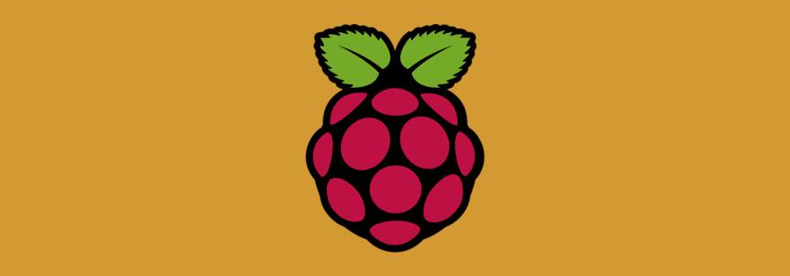 Обложка: Raspberry Pi наборы: что и как выбрать?