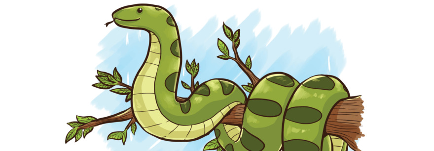 Обложка: Встроенные функции Python: какие нужно знать и на какие не стоит тратить время