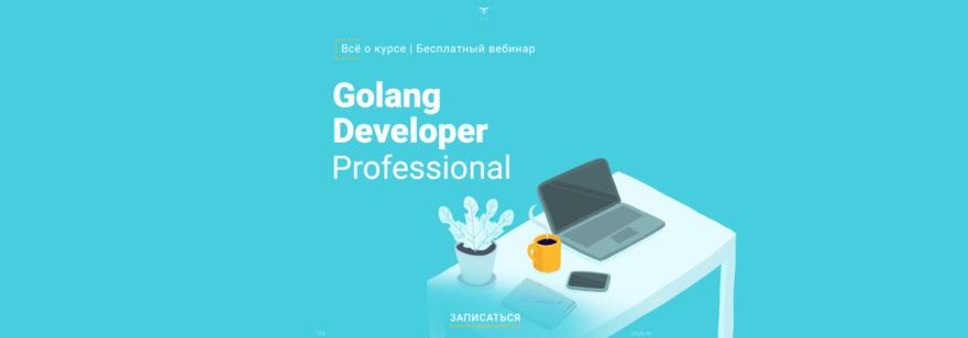 Golang Developer. Professional