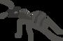 Обложка: Как муравьи решают проблемы коммивояжёров