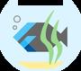 Обложка: Создание pet-проекта на Flutter и Firebase. Почему сделали такой выбор?